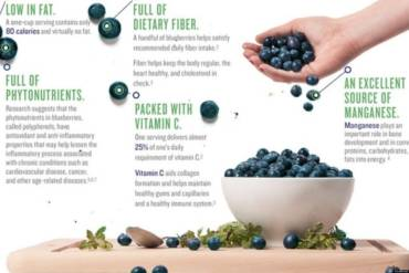 Blueberries, the super food